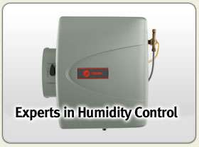 The Humidity Control Experts